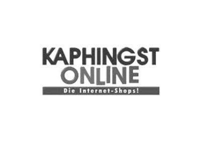 kaphingst-online.de
